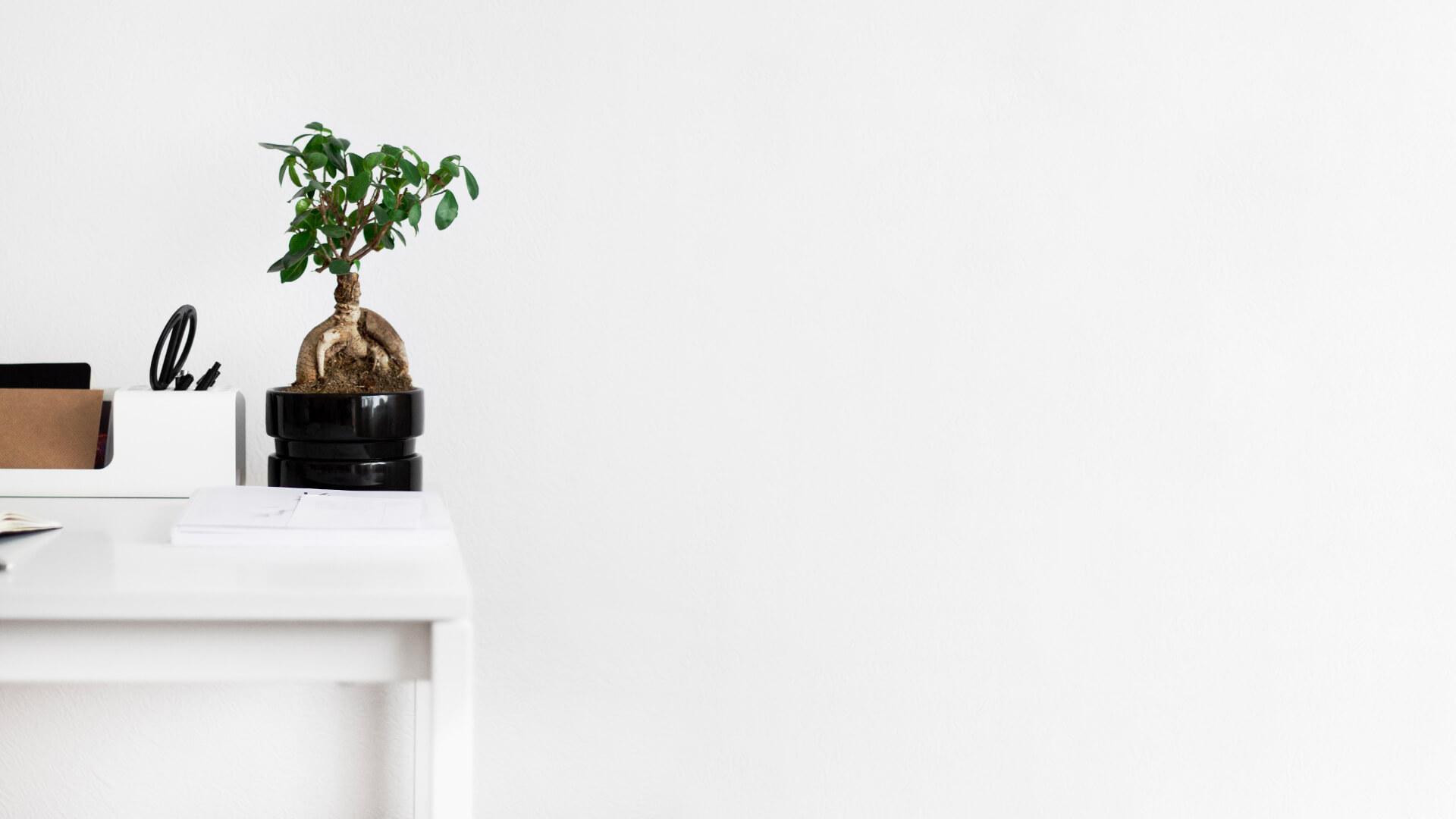 Appartement Avec Jardin Nantes immobilier nantes | victor & richard
